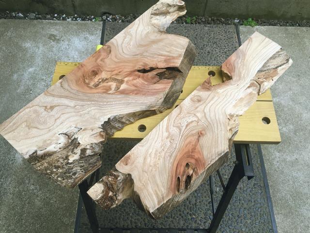 木のカットが完了