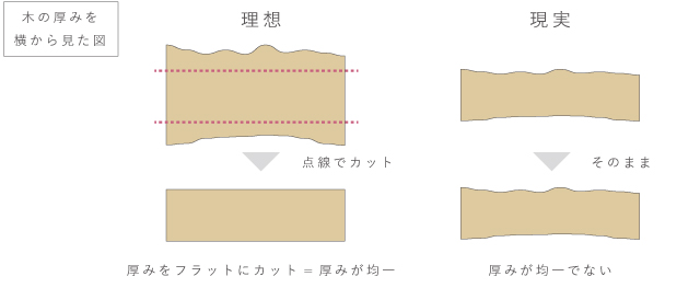 フラットな木のイメージ図